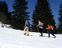 Schneeschuh-AlmTour mit der Skischule Krün-Wallgau