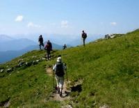 Geführte Bergwanderung für Gäste zum Brauneck - Jachenau