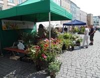 Garten- und Antik-Markt