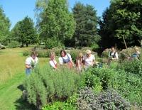 Jahreszeitliche Führung durch den Kräuterpark