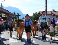 Almabtrieb u. Bauernmarkt in Krün - Bauernwochen - Krüner Festtage