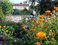 Geheimnisse der Benediktbeurer Klostergärten