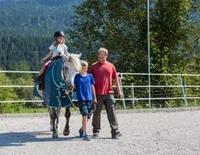 Pferdewochenenden bei den Isarhof-Curlys