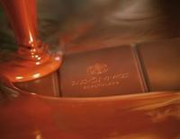 Schokoladenverkostung - Basic