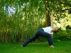 Luna-Yoga im Park (ab jetzt zur Mittagszeit)