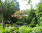 21. Hildegardfest im Hildegard-Heilpflanzen-Garten