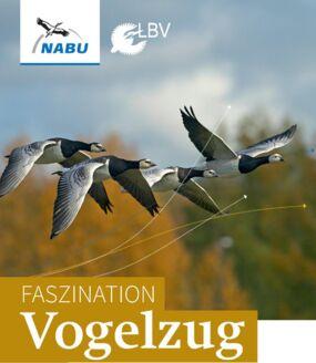 Birdwatch - Zugvogelbeobachtung