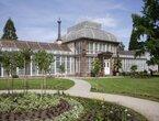 Wo stecken eigentlich die Pflanzen des Großen Gewächshauses im Sommer?
