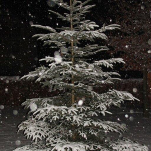 Weihnachtsfeier vom Sportverein Erlstätt