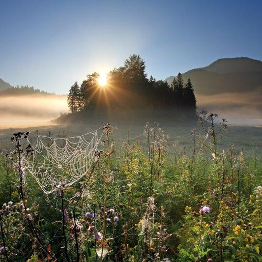ALMWOCHEN - Reit im Winkl inklusiv - Sonnenaufgang auf der Eggenalm