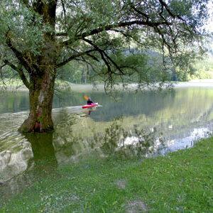 Der Natur auf der Spur - Wanderung um das Hallthurmer Moos
