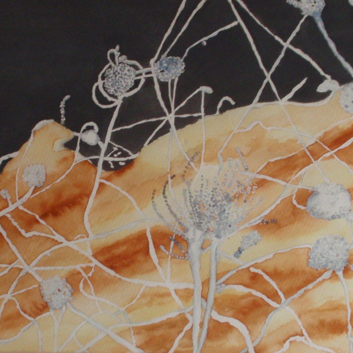 """Ausstellung """"Augenblicke"""" - Karen Roth"""