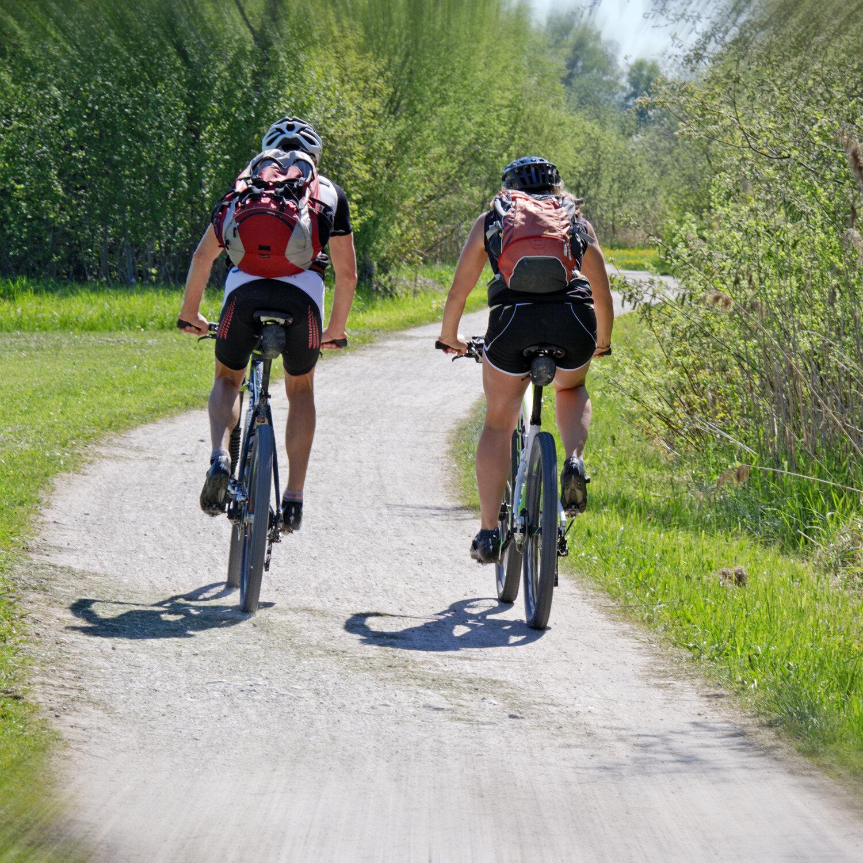 Mountainbike Treff