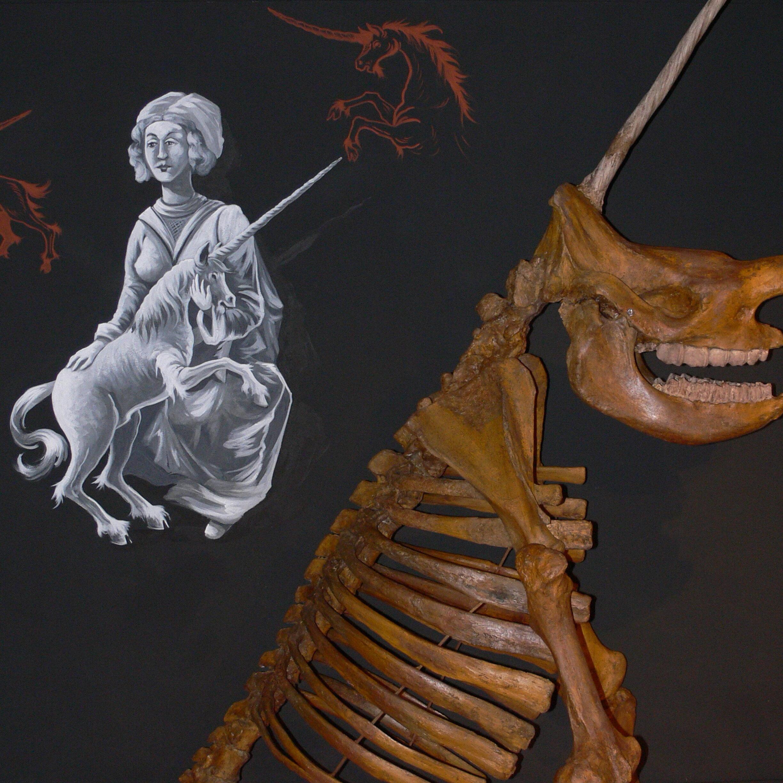 Sonderausstellung: Fossilien im Volksglauben