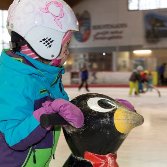 Pinguinkurs