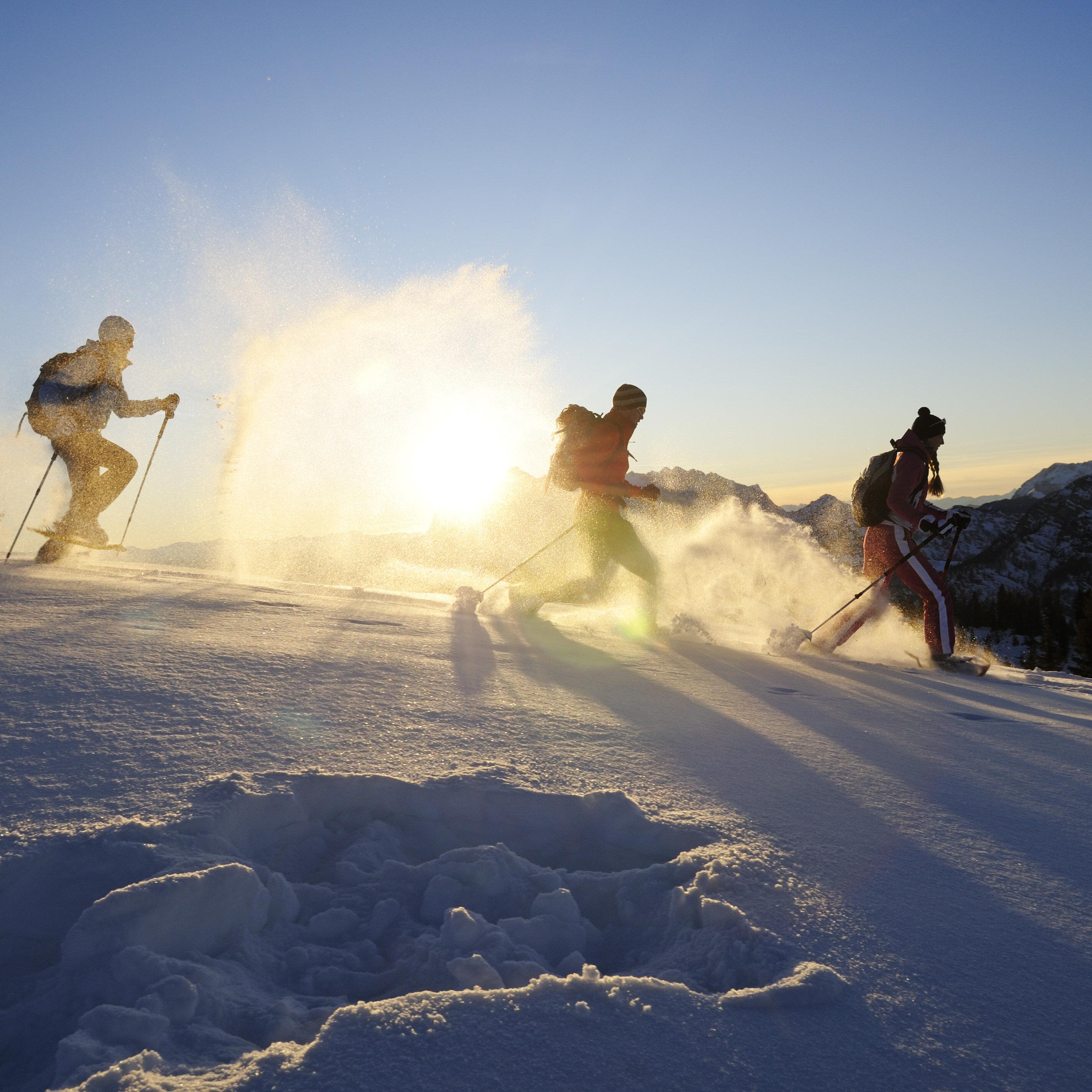 "Schneeschuh-Tagestour ""Gipfelglück"""