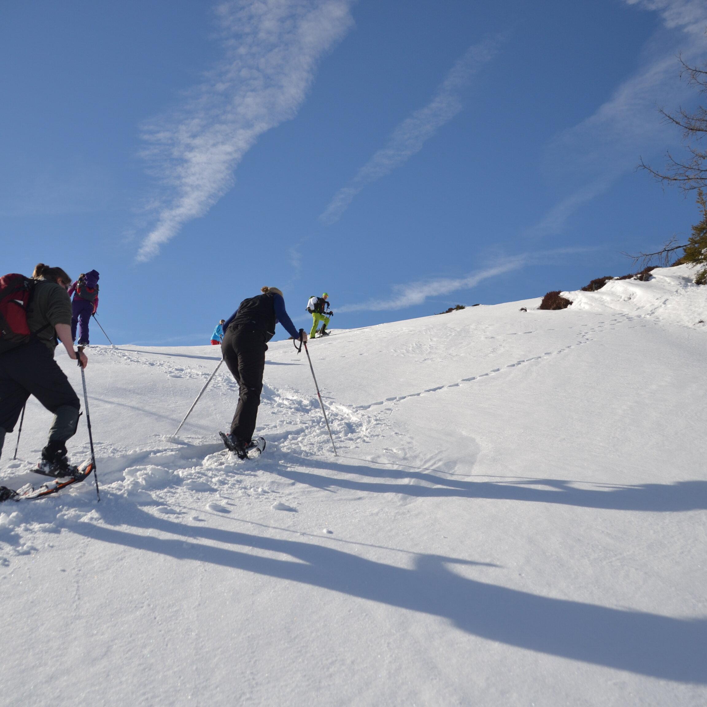 """Schneeschuh-Tagestour """"Winterwald"""" für Kenner und Genießer"""