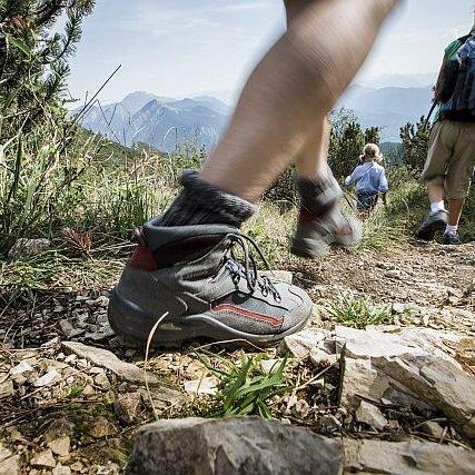 Geführte Bergwanderung auf die Sonnenspitz, 1271 m
