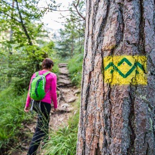 Wandern rund um Großgmain und Randersberg