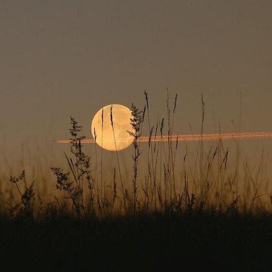 Wandern bei Mondschein