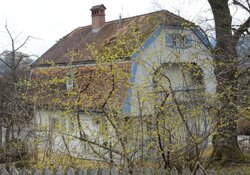 Auf den Spuren von Gabriele Münter durch das Blaue Land