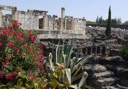Besinnliche Bilderreise an Orte Jesu