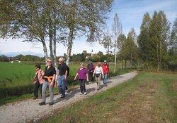 """Geführte Ganztageswanderung """"Murnau-Guglhörrundweg-Großweil"""", 14 km, ca. 100 Hm. Mit Bus zurück. PKW erforderlich"""