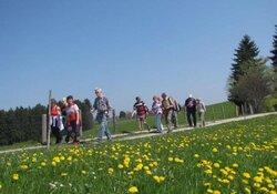 """Geführte Halbtageswanderung """"Bad Bayersoien-Ammerschlucht-Wildsteig"""", 9 km, 200 Hm.PKW erforderlich"""