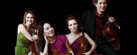 Daedalus Quartet - Daedalus Quartett