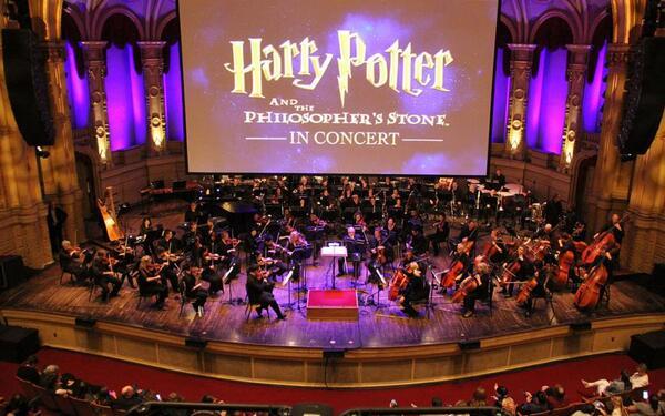 Harry Potter und der Stein der Weisen | VSA  Matthew Baird