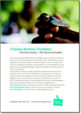 Fräulein Brehms Tierleben: Hirundo rustica – Die Rauchschwalbe