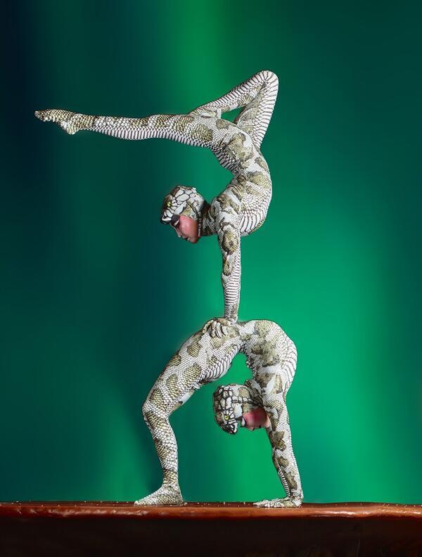 Schlangenmenschen können ihre Körper durch jahrelanges Training extrem biegen. Diese mehr als zweitausend Jahre alte Kunst beherrschen die mongolischen Akrobatinnen meisterhaft | Robert Grischek